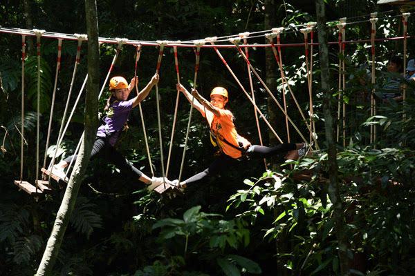 """原始森林""""丛林飞跃"""":挑战你的肾上腺激素"""