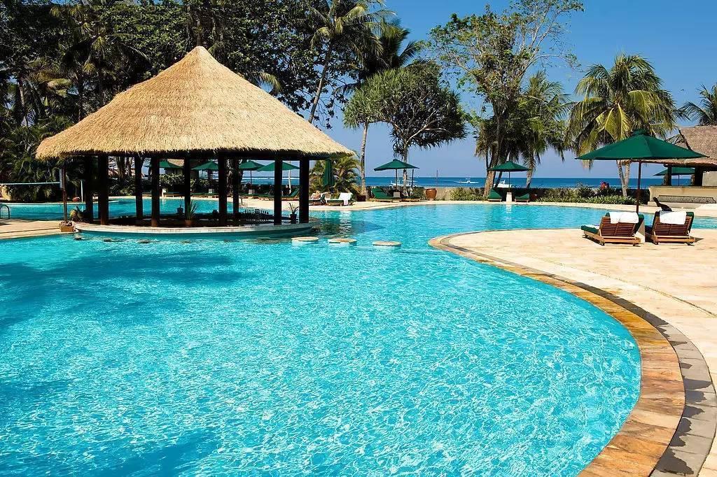 美丽海岛椰树壁纸