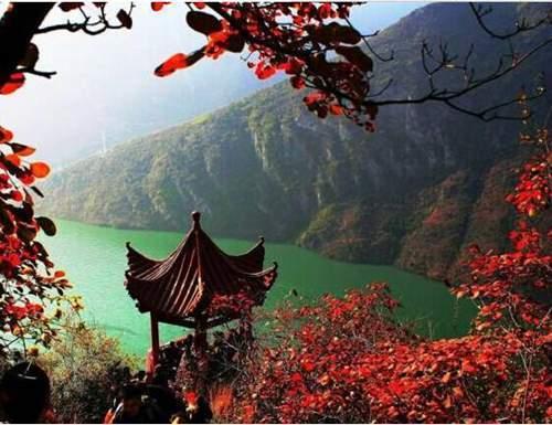 本月26日【第五届国际巫山红叶节开幕式明星演唱会】嘉宾有.是真的.图片