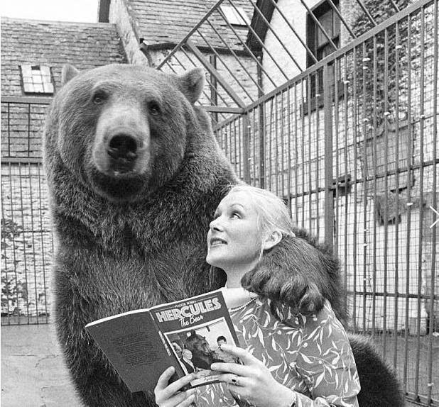 [养棕熊当儿子]英夫妇养熊26年当后代 每天生活照曝光