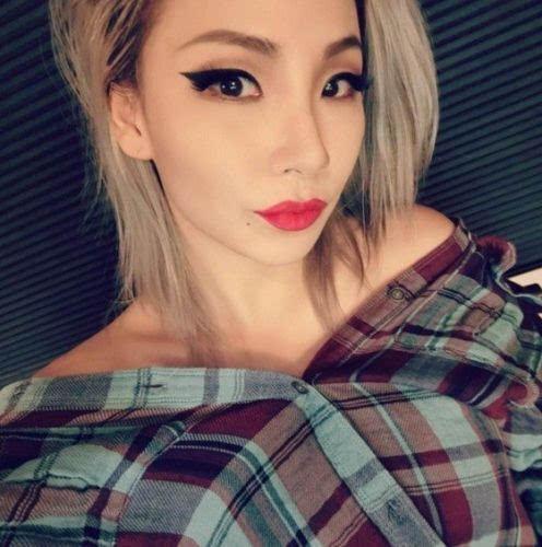 韩国女子组合2ne1成员cl