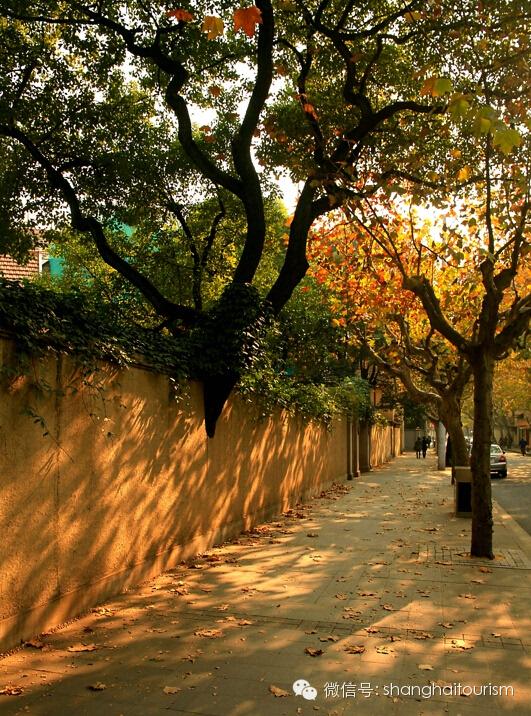秋天落叶水粉画创意