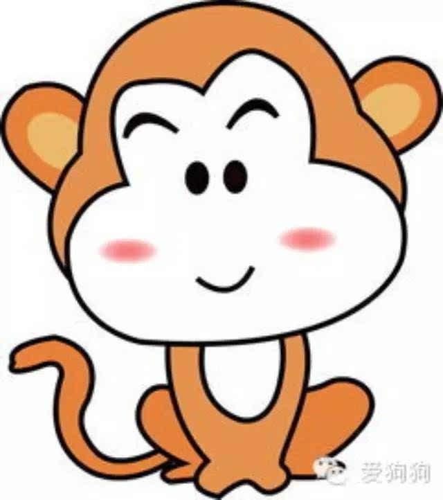 小猴子打球_当一只小猴子遇到一只充满惊恐的流浪猫后 结果出乎