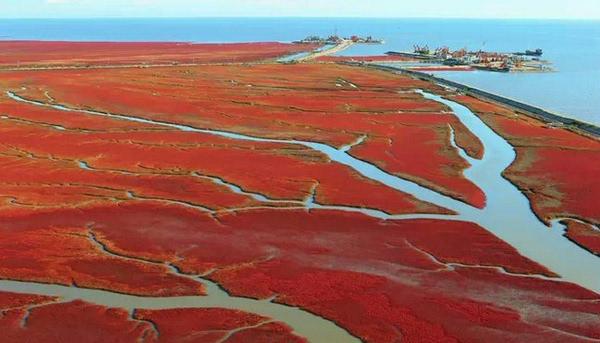 中国四季游钓之城辽宁盘锦 盘锦市地处渤海湾北部、辽河三角洲中心地带,坐拥得天独厚的垂钓资源,万亩以上的水库就有7座,流经市内的河流21条,河流总长634公里,流域面积达3570平方公里。盘锦人临水而居,并由此产生了湿地之都所特有的垂钓文化。辽河入海口兼具海水和淡水资源,使盘锦除了常规的淡水鱼种垂钓资源之外,同时拥有海钓、两合水垂钓资源。近年来,盘锦多次举办各类垂钓大赛,且规模和范围逐渐扩大到全国各地。独特的湿地风光和垂钓资源吸引着五湖四海的朋友走进盘锦、关注盘锦。尤其冬季的冰钓运动更是盘锦冰封雪盖时独