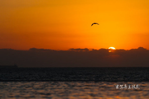 【青岛西海】在涵碧楼看壮丽的海上日出 - 海军航空兵 - 海军航空兵