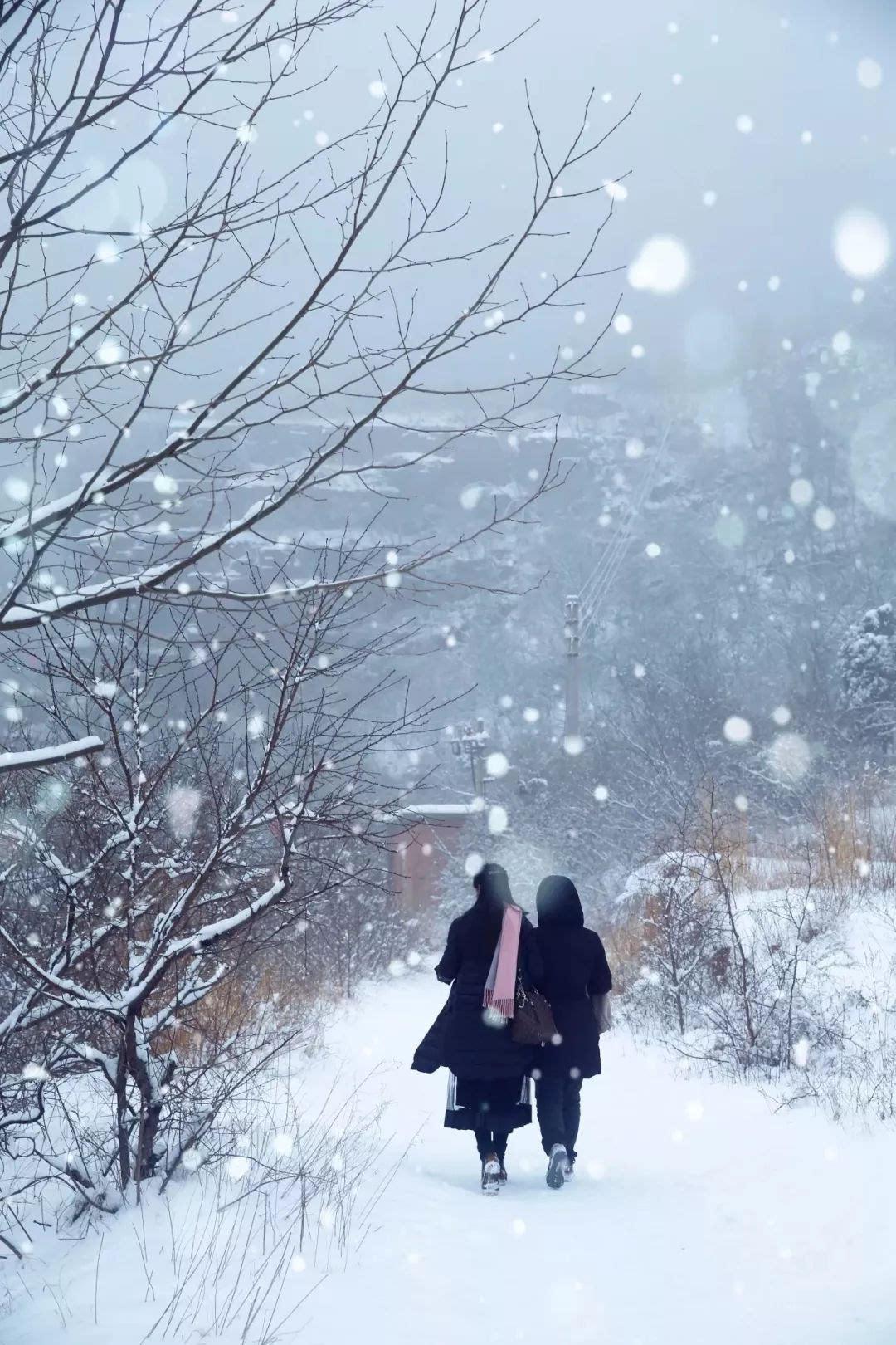 情人节一场大雪,就美腻了整个云台山
