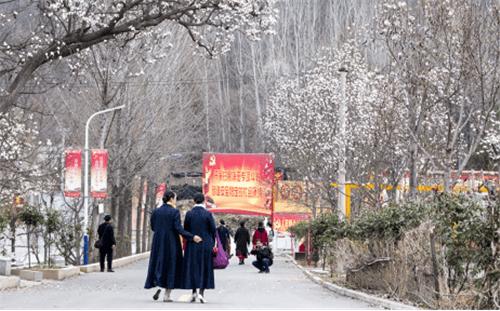 平顶山市鲁山县:春风送暖花千树 旅游脱贫攻坚路