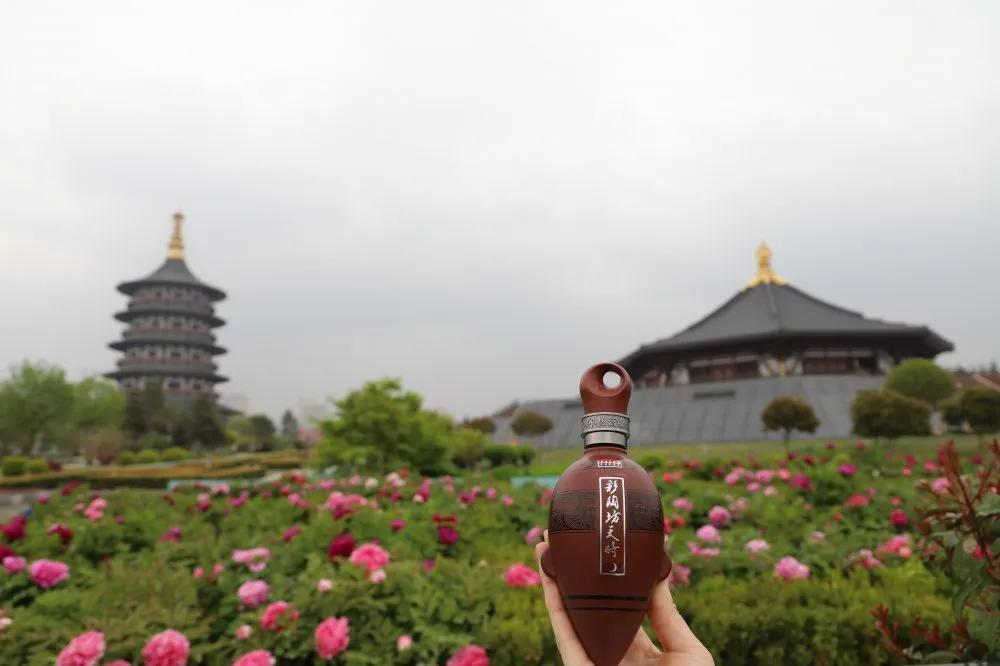 中国洛阳牡丹文化节:醉美牡丹四月天,洛阳掀起彩陶风