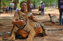 以慈悲为怀的僧人,成了老虎们的刽子手,让人愤怒