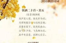 秋日宜读诗,30首秋日诗词带你领略古人笔下的阑珊秋意!