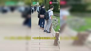 videolib_repo_2010_19_0j0mla17tkz_SD_0j0mla17tkz-mobile