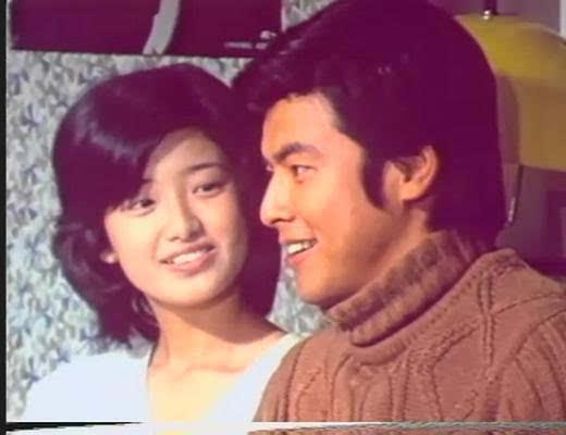经典荧幕情侣_中国电视史上最经典电视剧 难以超越-搜狐文化频道