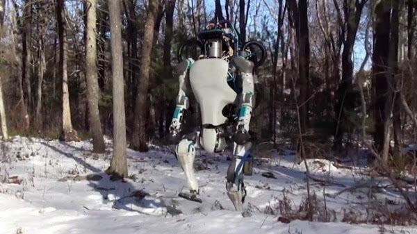 盘点全球最先进的十大仿人机器人的照片 - 10