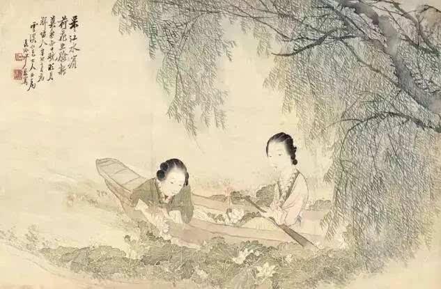 趁着不深_中伏的早晨,趁着天刚刚亮,到荷花池边采集荷露,放松身心,感受大自然的