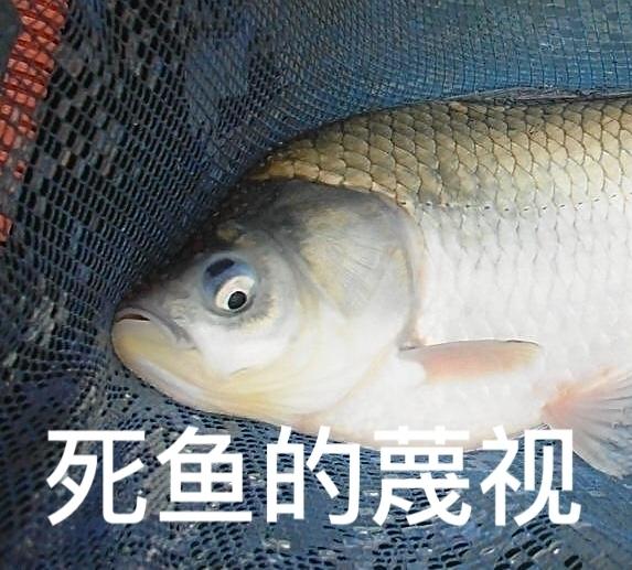 大波射_一大波死鱼表情包接近中!