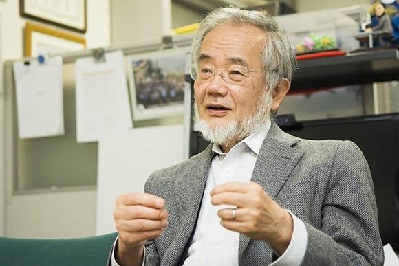 日本科学家大隅良典获2016诺贝尔医学奖的照片 - 1