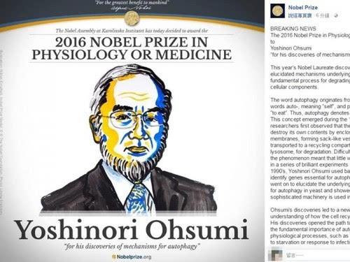 日本科学家大隅良典获2016诺贝尔医学奖的照片 - 2