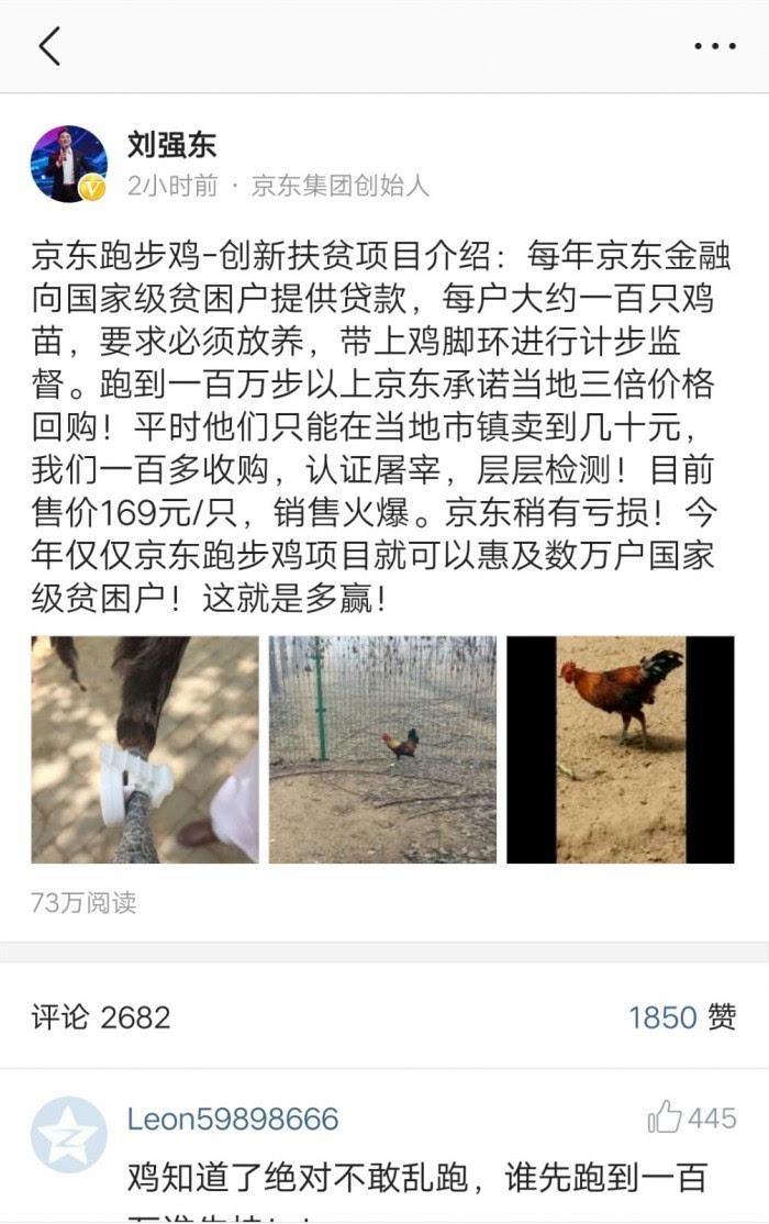 京东跑步鸡:大白鹅巡逻/搭配一定比例母鸡/售169元一只的照片 - 3