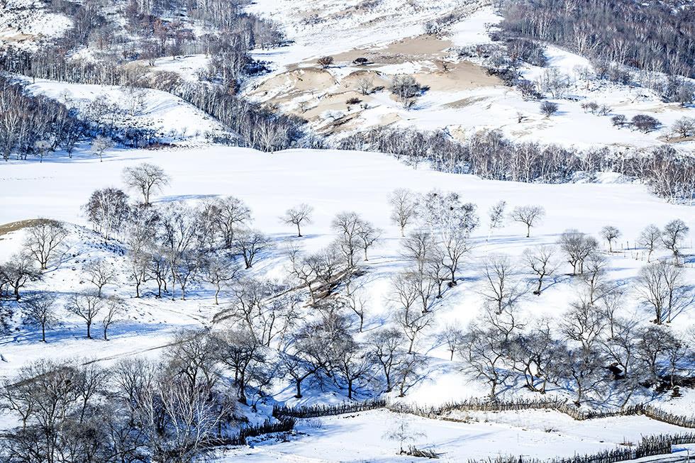 冬天写景作文300字_写雪景的作文300字-写雪的作文300字左右_美丽的雪景作文400字 ...